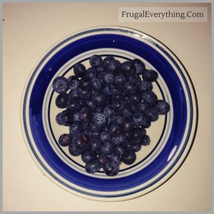 how to preserve blueberries